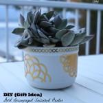 Gold Decoupaged Succulent Mug Planters