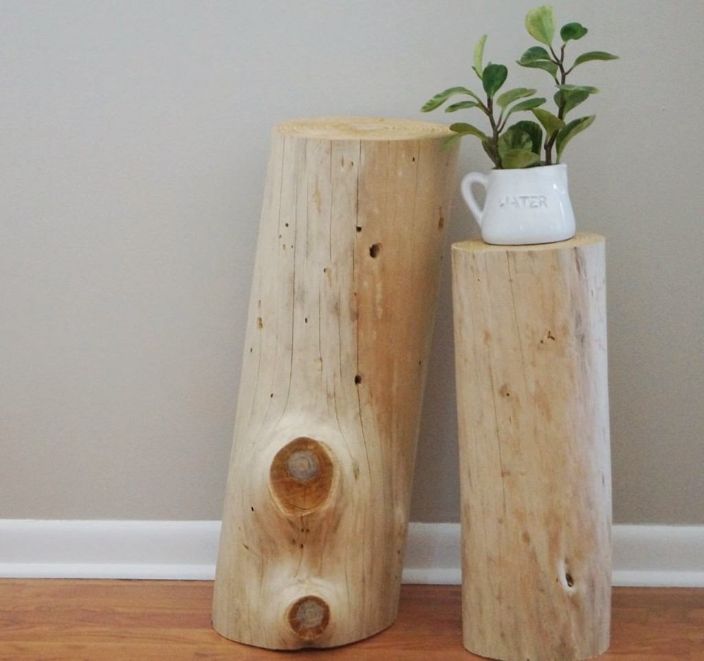 Bleached Tree Stump (23)