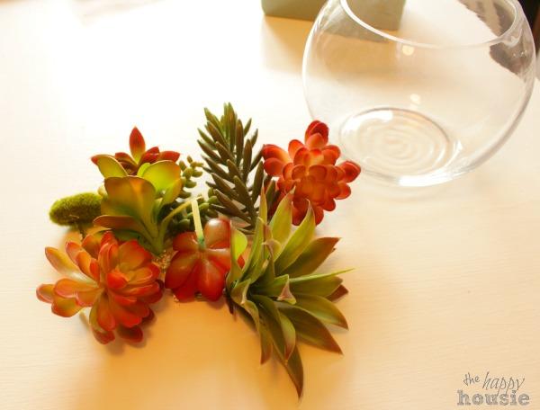 Arranging the succulents.