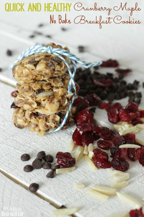 Quick & Healthy Cranberry Maple No Bake Breakfast Cookies