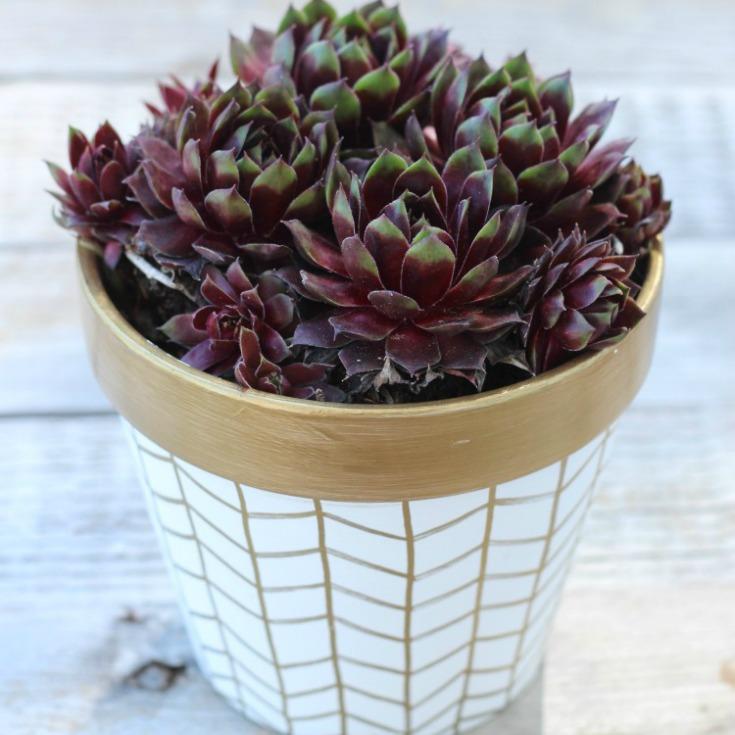 DIY Gold & White Herringbone Decorative Flower Pots