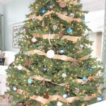 Rustic Natural & Blue Lake Cottage Coastal Christmas Tree Decor